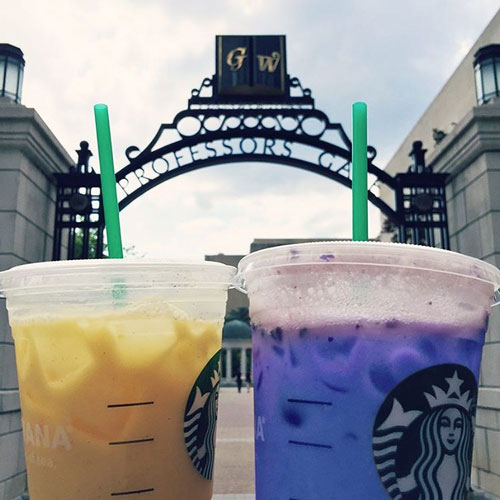 Buff and blue drinks from Starbucks