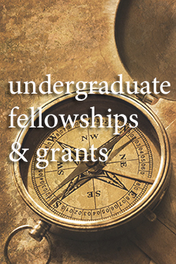 undergraduate fellowships